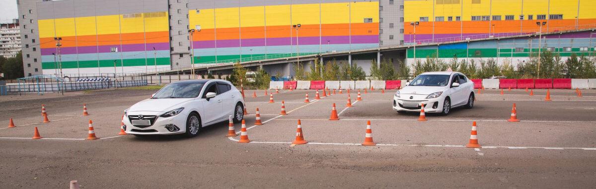 Заказать водительские права в Долгопрудном